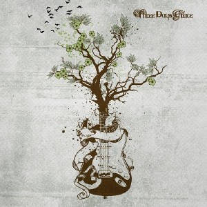 Three Days Grace - Acoustic Wood Insight (2015)