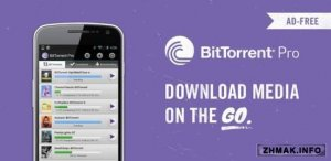 BitTorrent Pro v3.8 (Paid version)