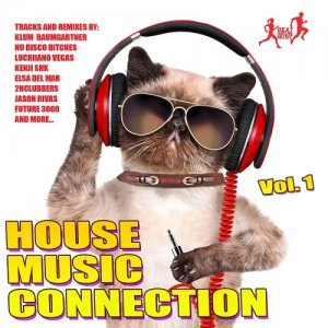 House Music Connection, Vol. 1 (2015)